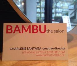 Bambu the Salon