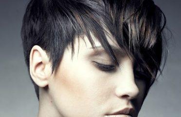 Carousel Hairstyling