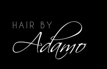 Hair by Adamo